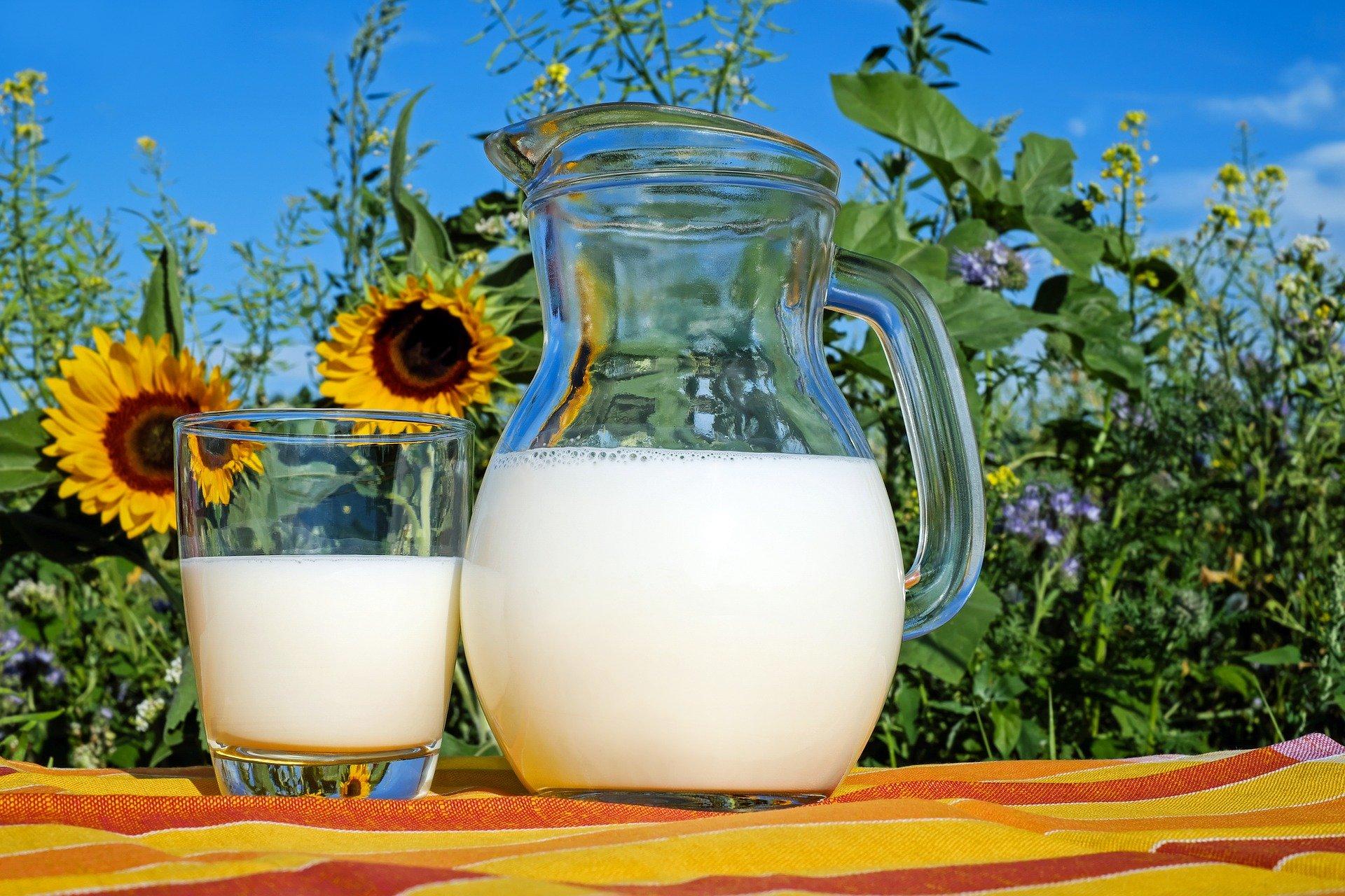 חלב טרי למשרדים
